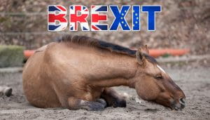 Brexit Sign Coloured as the UK and EU Flags Over a Lying Horse